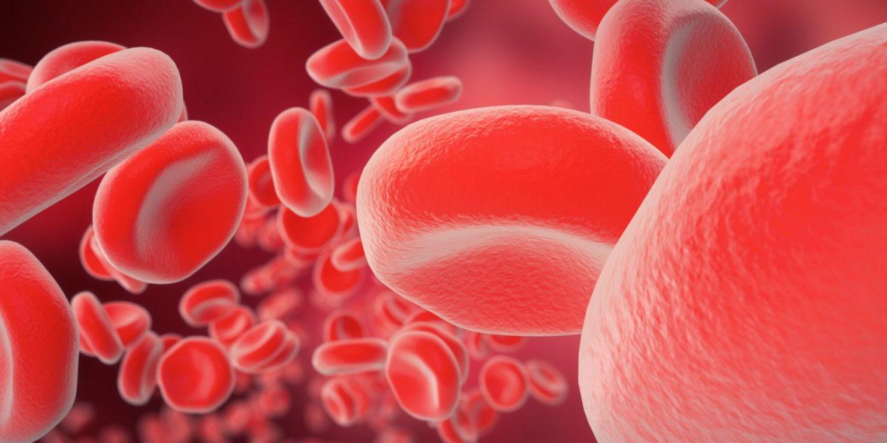 Interviu Prof Dr. Daniel Coriu: Avem zone întregi care nu au hematolog, ceea ce este o mare problemă